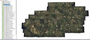 1998 Gemeente dekkend mozaiek
